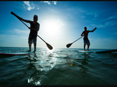 4003 Stand up Paddle (SUP)