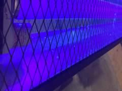 4159 UV Schwarzlicht