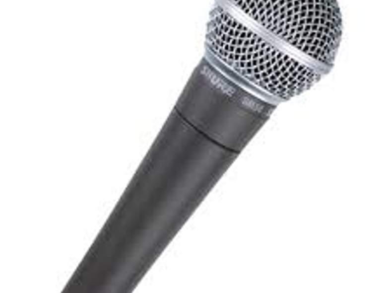 1389 Mikrofon
