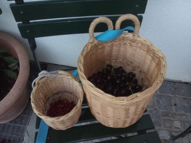 5759 Körbe für Kirschen und Beeren