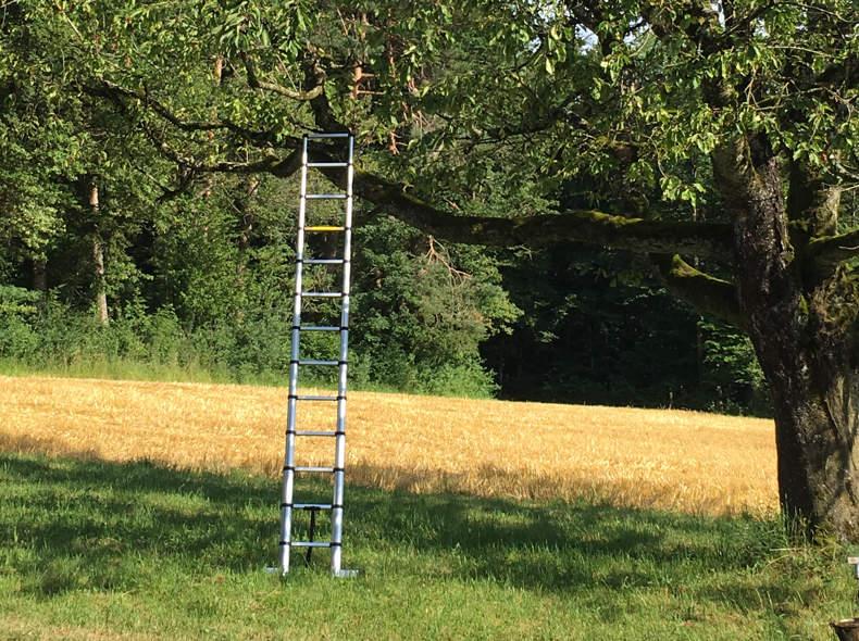 16785 Leiter, kompakt, ausziehbar 374cm