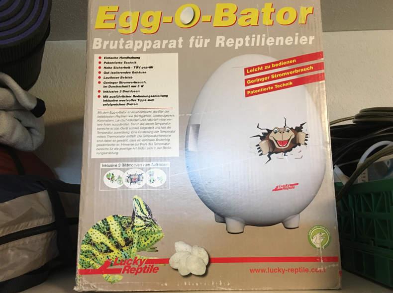 16795 Brutapparat Incubator für Reptilien