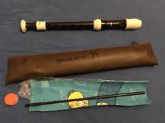 17386 Flöte von Yamaha