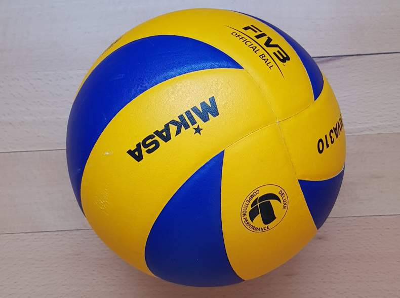 20381 Volleyball