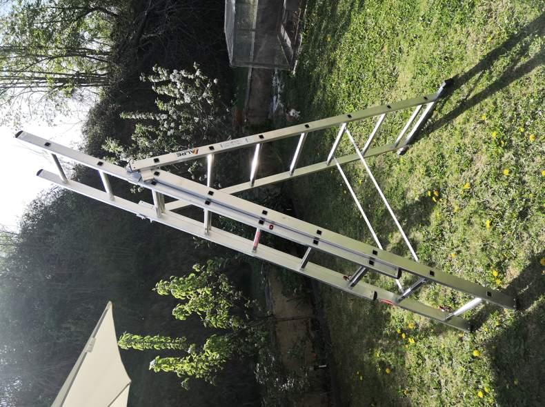 22424 Leiter Ausziehbar 3x7