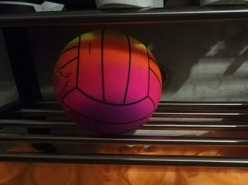 24172 Volleyball / Beachball