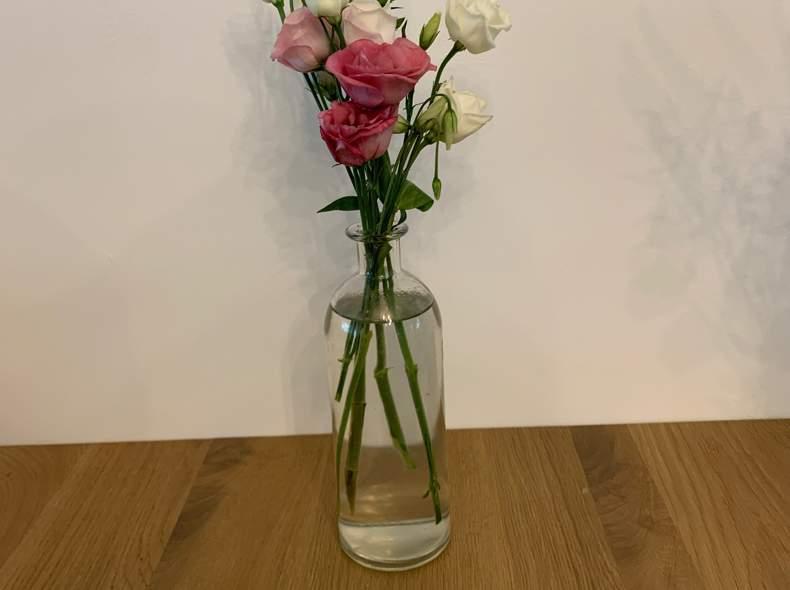 24513 Hohe Vasen