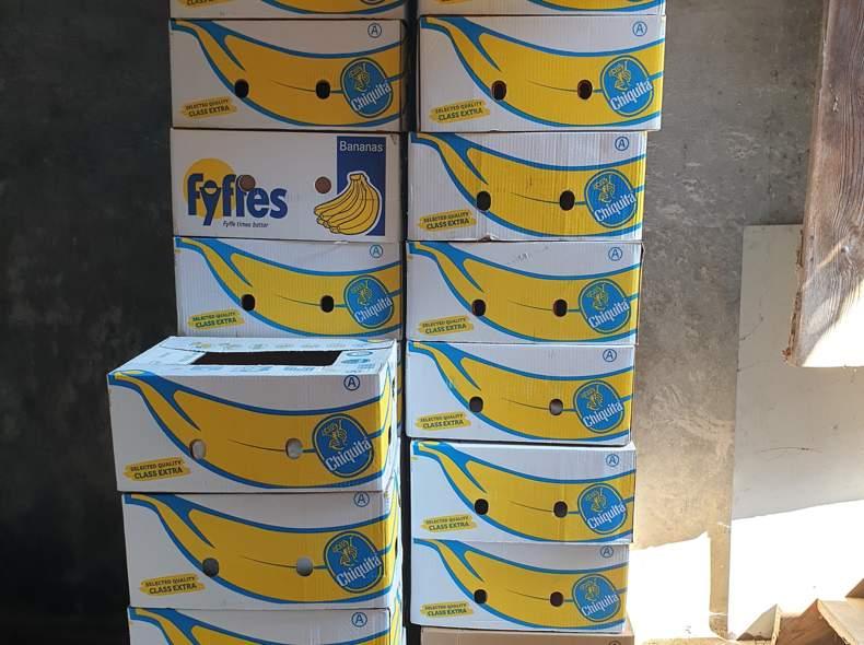 25233 20 Bananenschachteln