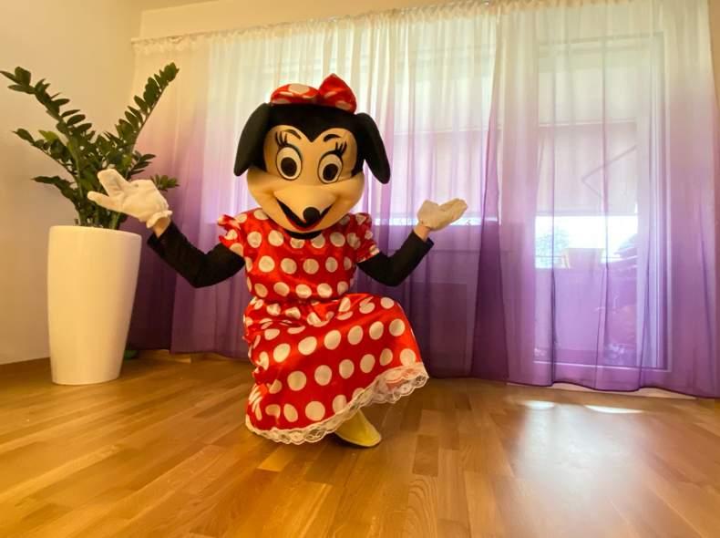 20701 Mouse Maskottchen Kostüm