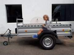 29641 Anhänger mit 1050 kg Nutzlast