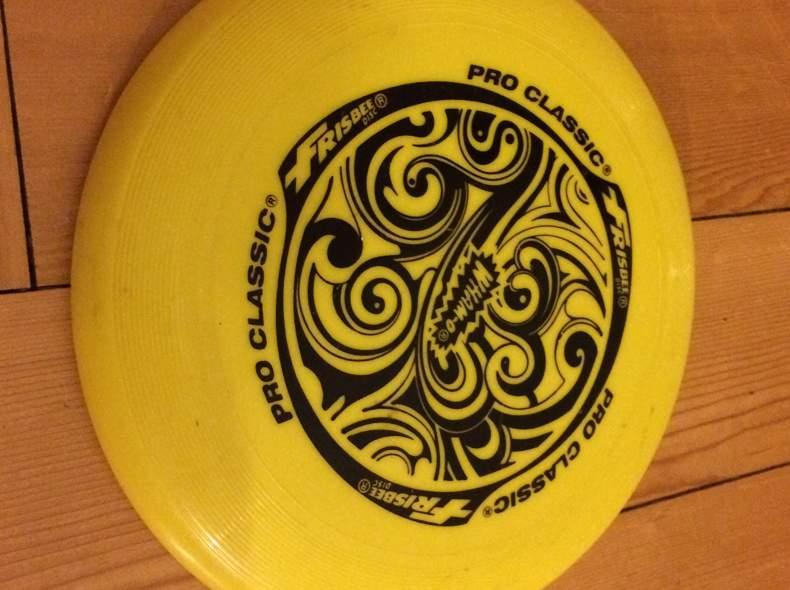 31542 Frisbee