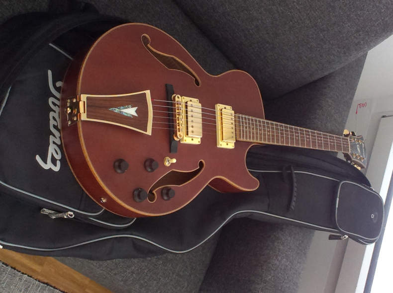6801 Jazz Gitarre(semi-akustik, archtop)