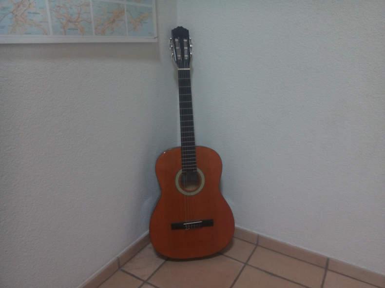 8818 Gitarre