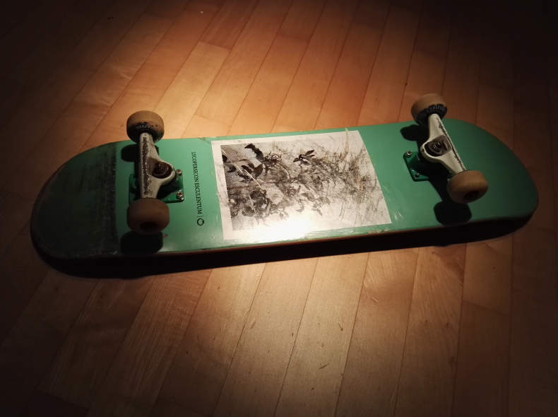 9649 Profi Skateboard