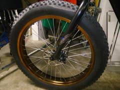 10126 E-bike Fatbike von TOTEM