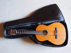 12692 Akustische Gitarre