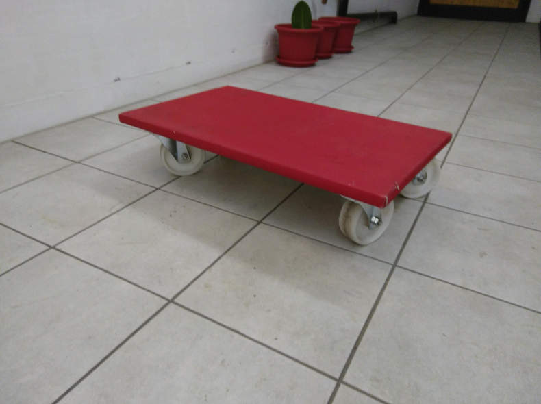 13438 Transport-Rolli