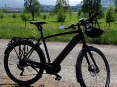13937 E-Bike CityZen - Gazelle 45 KM