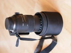 16037 Sigma 150-600mm f/5-6.3 (Canon EF)