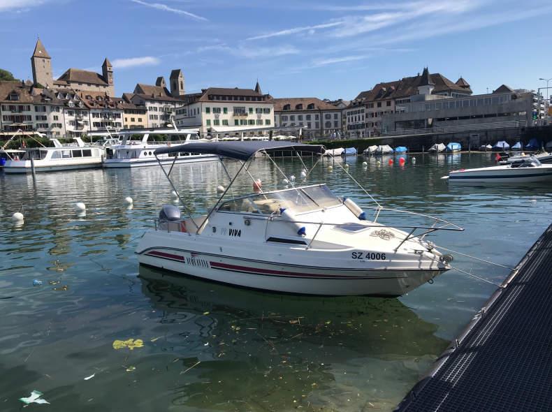 17199 Motorboot auf dem Zürichsee 115PS