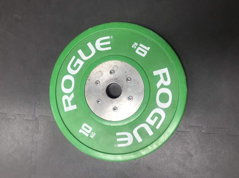 21657 10 kg Plate (Rogue or Crossequip)