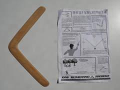 22265 Boomerang Holz