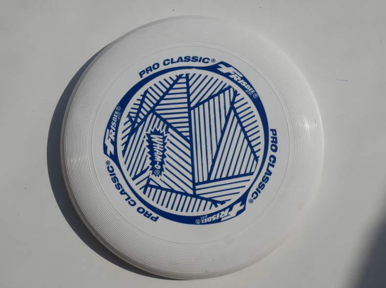 22278 Frisbee