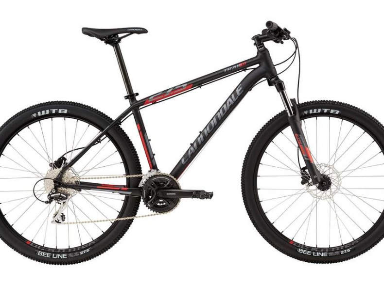 22317 Cannondale Mountain Bike