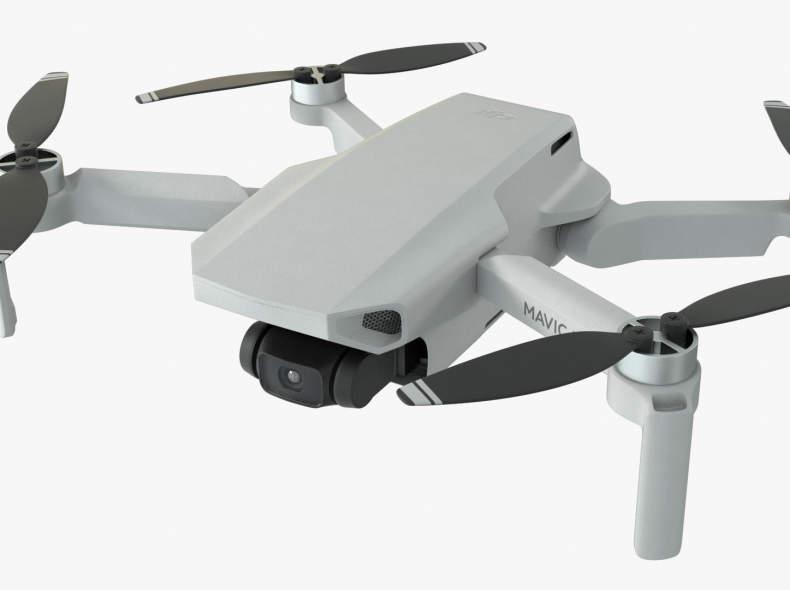 22394 DJI Mavic Mini (Video-/Foto-Drohne)