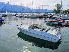 22131 Motorboot mieten auf dem Thunersee