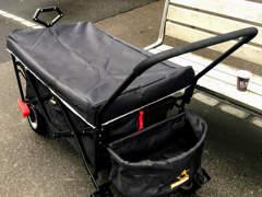17361 Bollerwagen MIT BREMSE