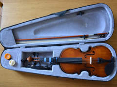 26462 Palermo Violine 4/4