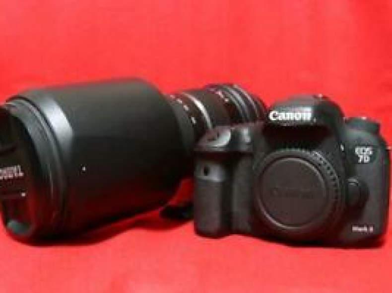 26620 Tamron 150- 600  mit Canon eos 7d