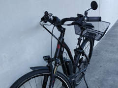 26642 E-Bike, Bosch-Motor, 9 Gänge