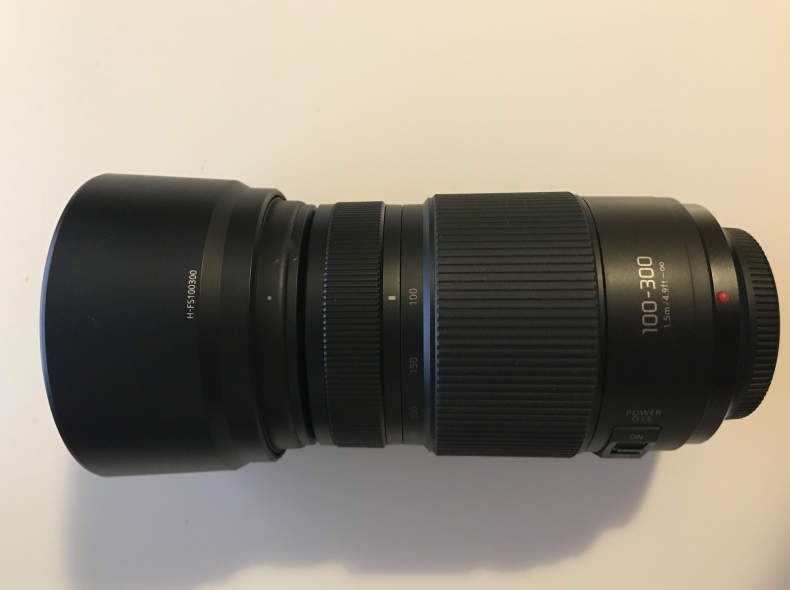 26853 Panasonic Lumix G Vario 100-300mm F