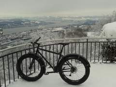 2869 Fatbike Surly Necromancer Pugsley