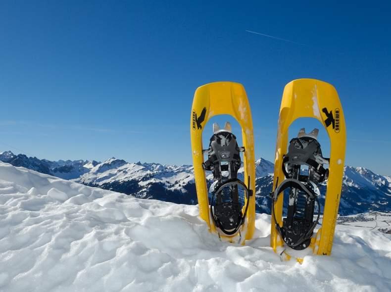 3004 Schneeschuhe