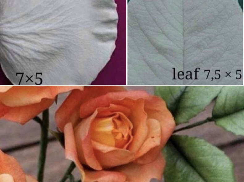 31509 3D Silikonform Rose & Blatt