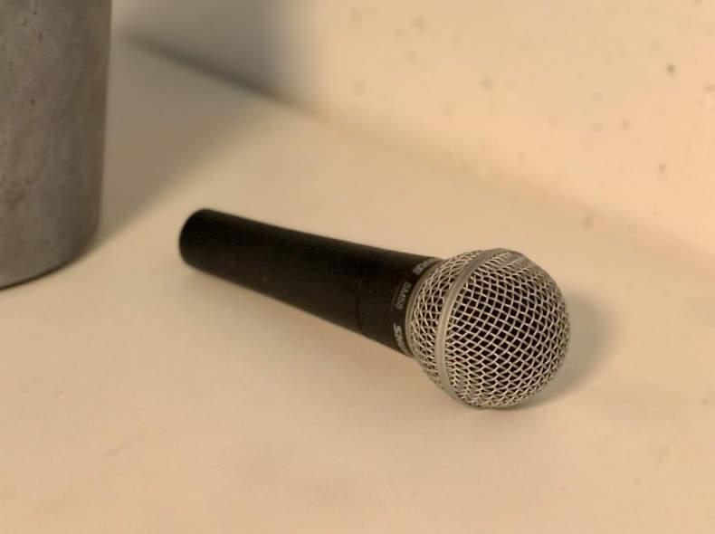 32367 Shure Bühnenmikrofon + XLR Kabel